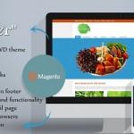 Готовая тема для Magento – Healthier