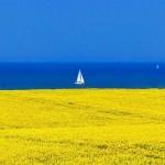 Кращі морські пляжі України – де відпочити цього літа
