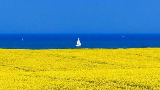 Лучшие морские пляжи Украины – где отдохнуть этим летом