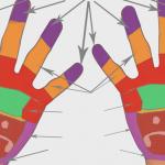 Масаж долонь і рефлексологія – на які органи впливають?