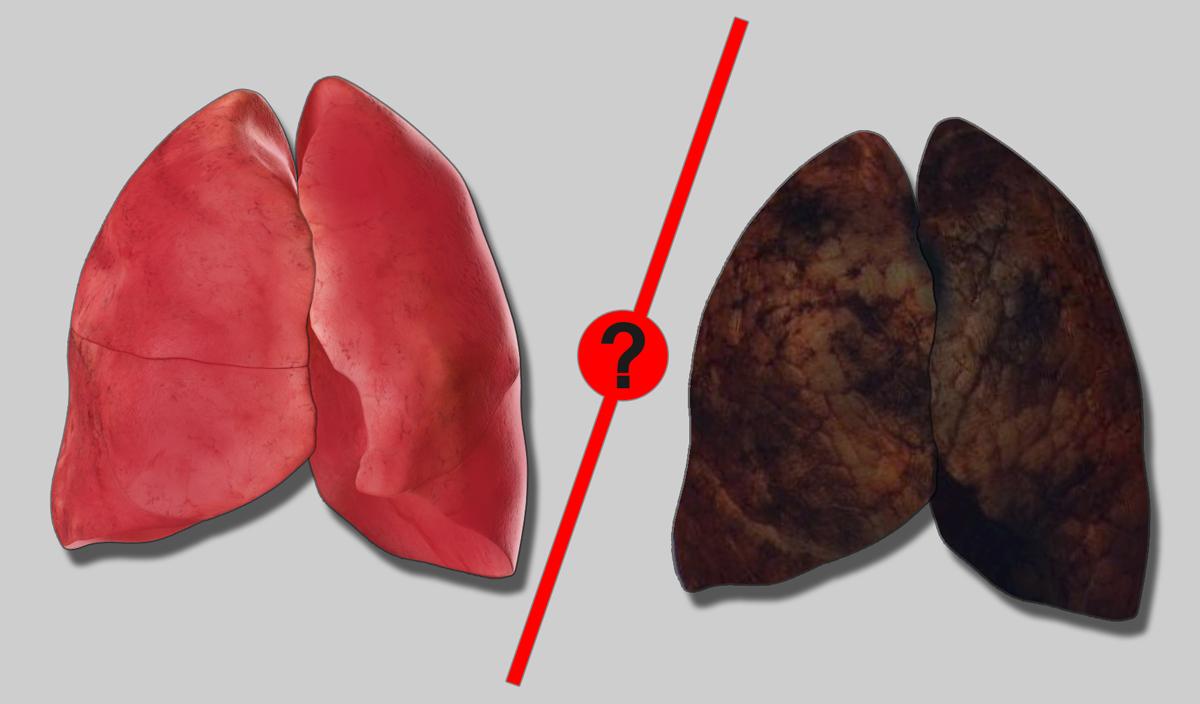 Що буде з вашим організмом, якщо кинете курити | SebWeo — симбіоз СЕО та Веб