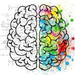 Наиболее интересные и удивительные факты о человеческом мозге