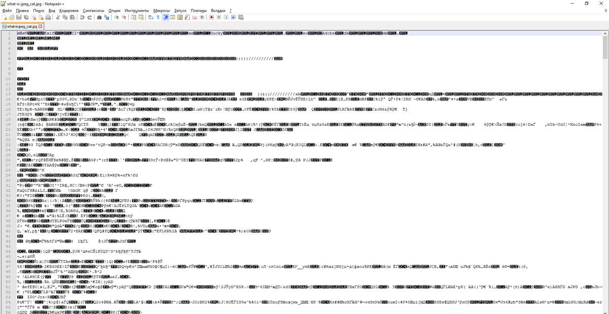 Що таке формат JPEG – докладний опис для фотографів